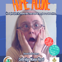 Home alone final poster